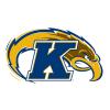 Kent State University